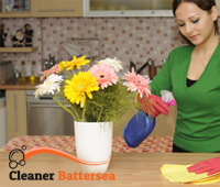 domestic_cleaning1