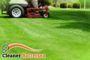 grass-cutting-battersea